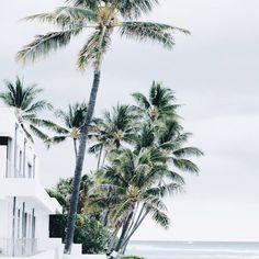 Luxe coastal living // @masonrosephoto