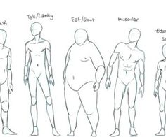 Hey look, male humans have different body types too!!