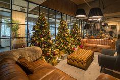 Wat er nou mooier dan de kerstsfeer van thuis ook op kantoor te hebben?! Bekijk ons ruime assortiment aan kerstbomen, decoraties en kleurpakketten via onze webshop: www.webshop-ambius.nl   #kerst #ambius #sfeerbeleving #mooistetijdvanhetjaar #decoraties #kerstopkantoor