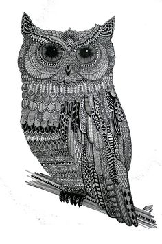 Owl Illustration 2.0 on Behance