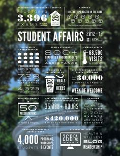Student Affairs Infographic by Christina Berkowitz, via Behance