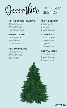 Now you and I can enjoy the smells of the holidays any time with these holiday doTERRA diffuser blends. You can have all the smells of the Holidays. Essential Oils Christmas, Essential Oil Uses, Doterra Essential Oils, Doterra Diffuser, Essential Oil Diffuser Blends, Aromatherapy Diffuser, Best Diffuser, Cedarwood Oil, Cedarwood Essential Oil