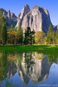 #Beautiful photography# Yosemite beautiful nature trees beauty wildlife yosemite national parks us national parks
