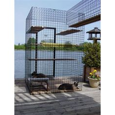 Custom outdoor cat enclosures from Habitat Haven...these are the best! Your cats will love being able to go outside at free will and you will love that they are protected.