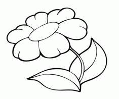 79 Besten Blumen Bilder Auf Pinterest Coloring Pages Of Flowers
