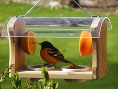 bird feeder plans | Look at these little birdies having a picnic…