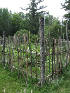Rustic Garden Fence. NeEd A sMaLL One To KEeP ChiCkEnS oUt Of FloWeR BeDs!+!+!