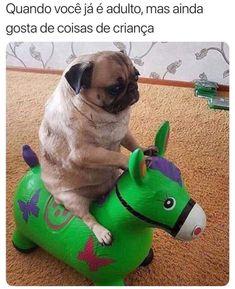 Caption this.now pug is rider . Cute Little Animals, Cute Funny Animals, Funny Cats, Cute Animal Photos, Kawaii, Cute Pugs, Animal Jokes, Dog Memes, Stupid Funny Memes