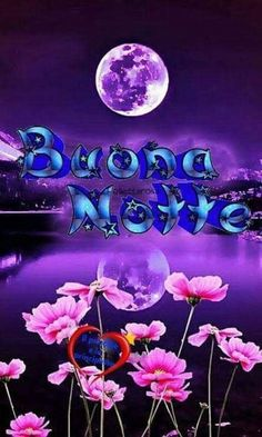 Good Night Image, Morning Images, Lily, Neon Signs, Genere, Love Of God, Good Night Msg, Messages, Fantasy