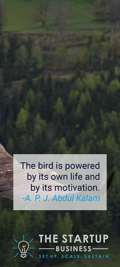 The bird is powered by its own life and by its motivation. -A. P. J. Abdul Kalam #TheStartupBusiness #Inspire