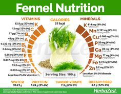 Fennel is a vegetable a spice and a medicinal plant all in one. Learn more about fennel health benefits history medicinal and culinary uses guidelines for cultivation and more. Fennel Health Benefits, Figs Benefits, Benefits Of Coconut Oil, Holistic Nutrition, Nutrition Guide, Health And Nutrition, Health Tips, Health And Wellness, Nutrition Jobs