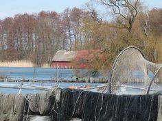 Vorbereitungen für einen Aquarellkurs in Schwerin | Fischerei am Schweriner See (c) Frank Koebsch