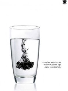 """""""Polluted river water kills as many people as a nuclear explosion."""" 