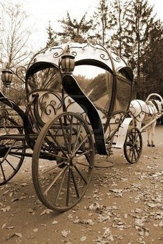 Horse and (very cool) carriage :)