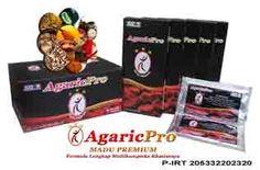 Obat Herbal Untuk Penyakit Darah Tinggi http://obatdarahtinggi.agaricpro.com/