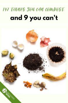 There are so many items around your house and yard that are able to be composted. This is the ultimate guide to what can & can't be. Diy Garden Projects, Composting, Food Waste, Food Items, Gardening Tips, Veggies, Canning, Fruit, Healthy