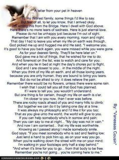 A Letter From Your Pet in Heaven. It gives me comfort knowing we will be together once again. Until then my sweet babies. Dog Quotes, Animal Quotes, I Love Dogs, Puppy Love, Pet Poems, Tears Of Sadness, Pet Loss Grief, Pomes, Pet Remembrance