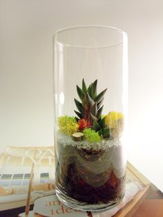 Urban Spring Garden. $25.00  Check out her Etsy it's got some awesome terrariums.
