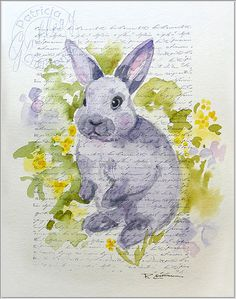 Chubby Bunny Rabbit Original Watercolor by PChristensenGallery