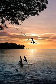 Swinging on and then letting go of a rope at the lake.