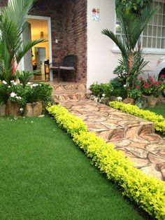 Front yard tropical landscaping idea