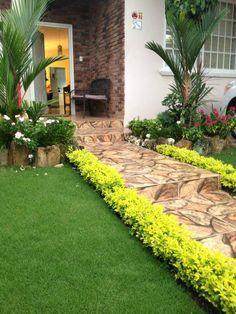 Pequeño jardín tropical