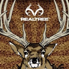 1000 Images About Realtree On Pinterest Camo Wallpaper