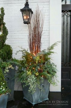 Container garden, winter container design, winter container garden, using greene. >> Find out even more at the image Christmas Urns, Christmas Planters, Outdoor Christmas Decorations, Christmas Garden, Christmas 2019, Winter Christmas, Winter Container Gardening, Container Plants, Container Vegetables