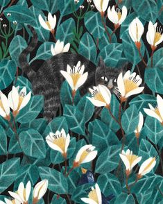 I spy... #Caturday! Illustration by @liekevandervorst. 👀 I interviewed her for the blog this week. Read her insightful answers by clicking…