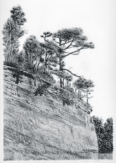 Árboles y acantilado. Colección paisajes a plumilla. Año 2012