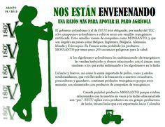 GMOs (Organismos Geneticamente Modificados) en Colombia ...La raiz de el problema
