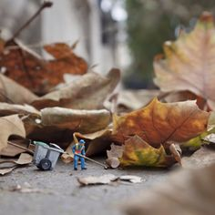 Slinkachu, 2012 |  Mini street art featuring a miniature guy shovelling gigantic (normal sized) leafs and cleaning the street. Click to see more of his work, and the work of 9 other miniature (street) artist.