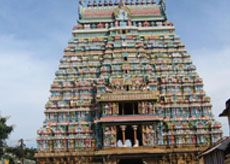 Five sites in Tamil Nadu, including famous Lord Sri Ranganathar temple in Srirangam, have been included in the tentative list by the Union Culture ministry for UNESCO's world heritage status, Union Culture Minister Kumari Selja said today.
