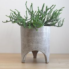 The WhiteRakuPlanter is a desktop pot for indoor house plants and herbs.This planteris made from brown raku clay with a matt white glaze.  17 cm (diameter) x 20cm (high)   A small drainage hole in the base of the pot allows you to water the plantover a sink before returning it to your table