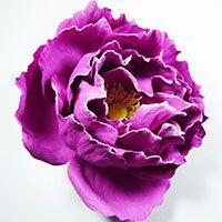 """Как сделать бурбонскую розу """"Барон Жиро де л'Эн"""" из фоамирана"""