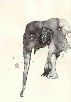 Elephant ~