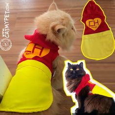 http://www.catmypet.com/chapolin-cat