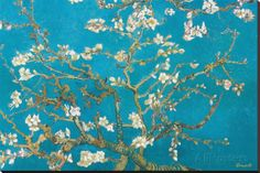 Almond Branches in Bloom, San Remy, c.1890 Stretched Canvas Print by Vincent van Gogh at AllPosters.com