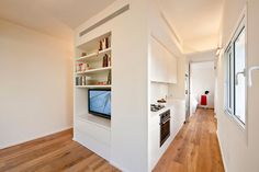 Small Apartment Conversion by SFARO Architects 02