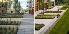 Bridgewater State University, Crimson Hall | Wagner Hodgson - Landscape Architecture