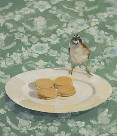 Bird perched on a plate of cookies