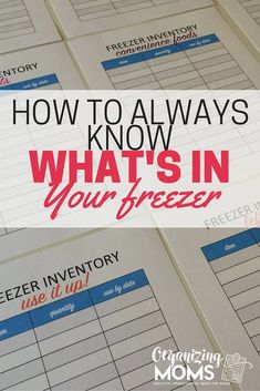 Looking for tips on how to organize your freezer? Wondering what kind of ice crystals are growing in your deep freeze? Use this method to help you clean out your freezer, and always know what it contains from now on. Deep Freezer Organization, Storage Organization, Kitchen Organization, Organizing Tips, Refrigerator Organization, Organising, Storage Ideas, Rv Refrigerator, Pantry Storage