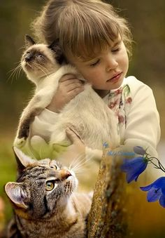 The world of babies and cats! Animals For Kids, Animals And Pets, Baby Animals, Cute Animals, Cat Photography, Children Photography, Beautiful Cats, Beautiful Children, Cute Kids
