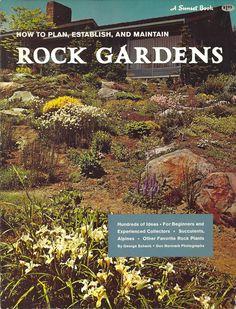Rock Gardens - Sunset 1964
