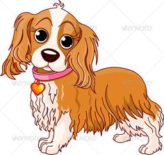 cavalier king charles spaniel with watermark.