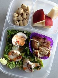 Reviews and comparisons of top lunch boxes and alternatives