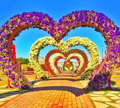The Hearts Passage is the part of the Dubai Miracle Gaden since its Season 1 and day 1. Over the years a lot of modifications have been made to make it look even more better. Today it is one of the most romantic floral theme of the Dubai Miracle Garden and one of the most favorite ones for the visitors of the Dubai Miracle Garden. Growing Flowers, Large Flowers, Real Flowers, Geranium Plant, Geranium Flower, Heart Structure, Million Flowers, Miracle Garden, Facing The Sun
