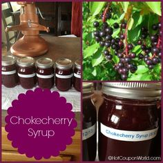 Chokecherry Syrup Recipe! Great on pancakes & waffles! We have so many of these around and they are all going to waste because nobody picks them!