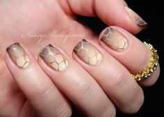 Turtle shell Ombre nail art design. Paint on turtle shell patterns on your nails and spice them up by adding an elegant nude and gray Ombre nail art combination.