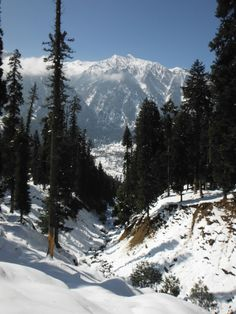 "The Kashmir Valley"" Pahalgam, Jammu and Kashmir, India"